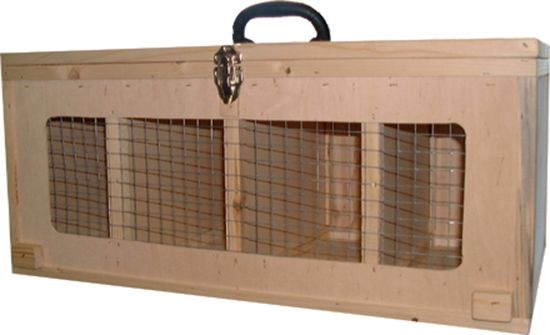 Transportkiste für große Zwerghühner / Hennen - Bild 1