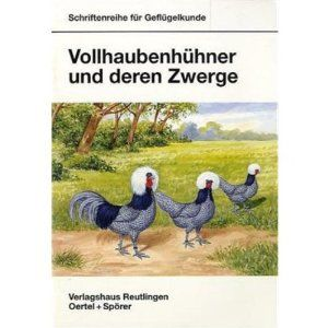 Vollhaubenhühner und deren Zwerge - Bild 1