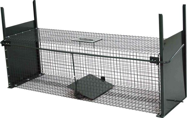Lebendfalle - Fuchsfalle - Katzenfalle (100 x 35 x 30 cm)