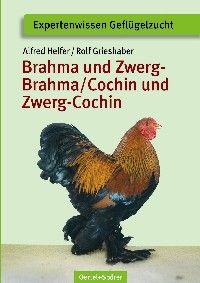 Brahma und Zwerg-Brahma, Cochin und Zwerg-Cochin - Bild 1