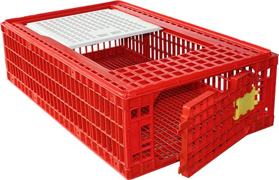 Carrier box for poultry