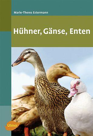 Hühner-Gänse-Enten - Bild 1