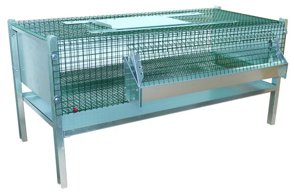 Fattening cage for quails