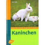 Kaninchen - Bild 1