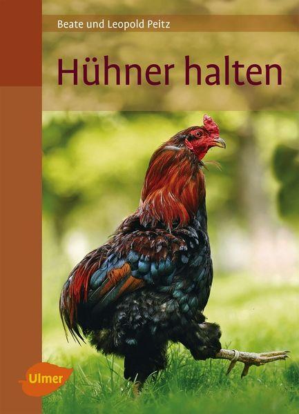 Hühner halten - Bild 1