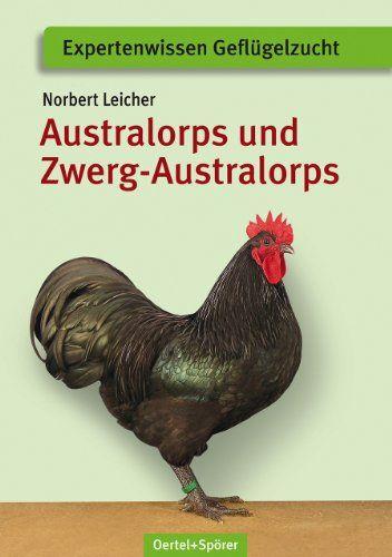 Australorps und Zwerg-Australorps - Bild 1