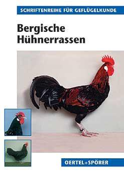 Bergische Hühnerrassen - Bild 1
