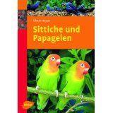 Sittiche und Papageien - Bild 1