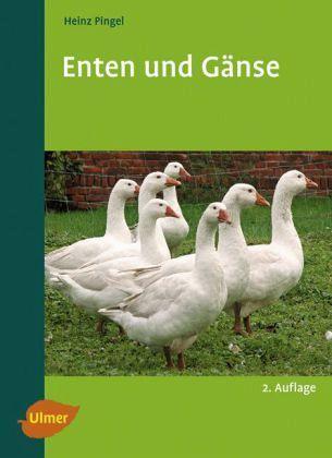 Enten und Gänse - Bild 1