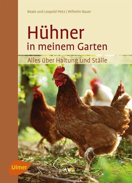 Hühner in meinem Garten - Bild 1