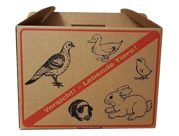 Cardboard transport box for pigeons and small animals