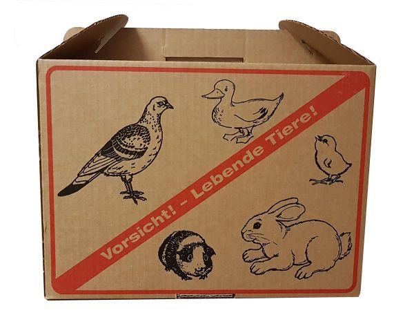 Transportkarton für Tauben und Kleintiere