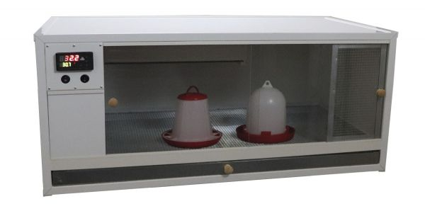 Brooder with digital temperature regulation 100 x 63 x 46 cm