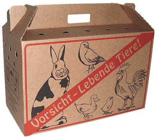 Cardboard transport box for poultry